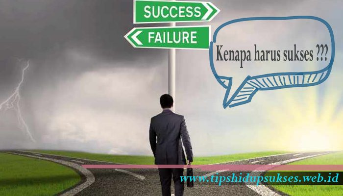 3 Alasan Kenapa Harus Sukses